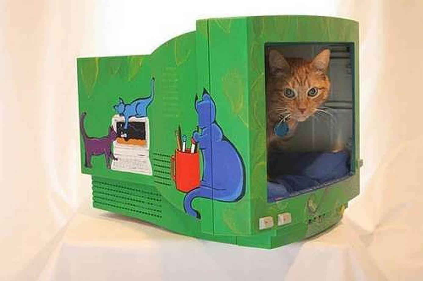 Домик для котят из коробки своими руками